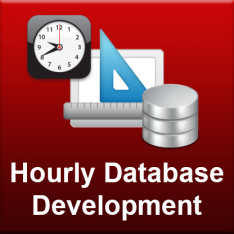 Hourly Database Development Service