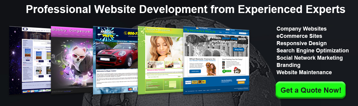 Professional Website Development from Experienced Experts - Company Websites, eCommerce Sites, Responsive Design, Search Engine Optimization, Social Network Marketing, Branding, Website Maintenance